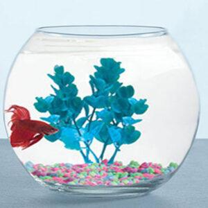 Мини аквариум ШАР